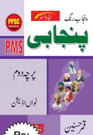 Punjabi Paper 2 For PMS By Qamar Hasnain