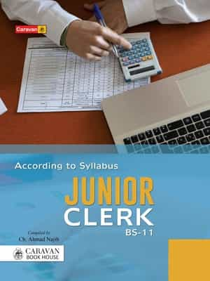 Junior Clerk Guide